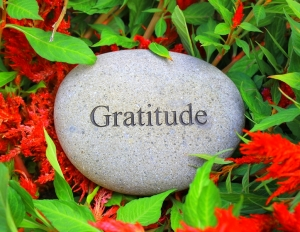 Life is Unpredictable: The Savior is Gratitude!,How to deal with unpredictability