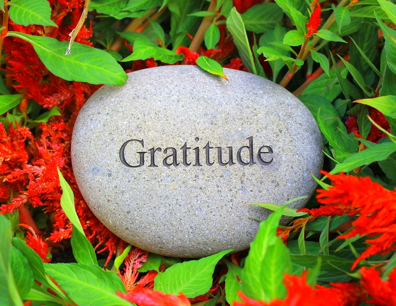 Life is Unpredictable: The Savior is Gratitude!