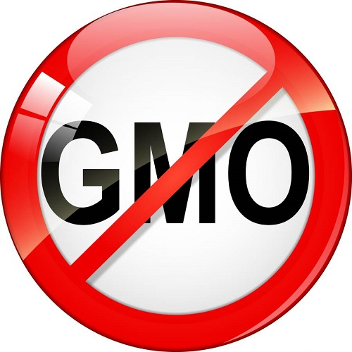 Say No to GMO Food
