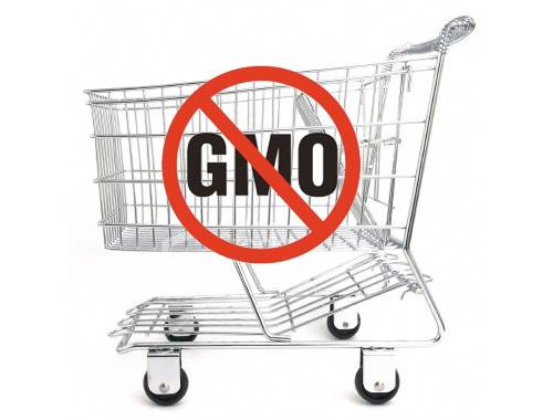 The Non-GMO Grocery Cart